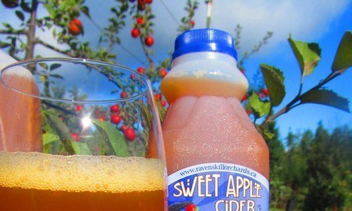 Ravenskill Orchard & Cidery