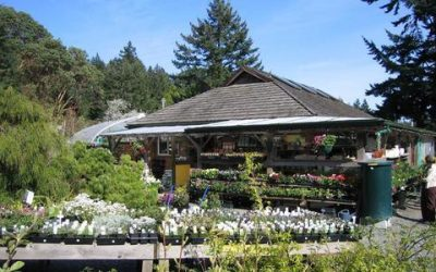 Wildrose Farm & Garden Centre