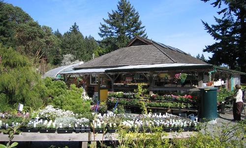 Wildrose Farm & Garden Centre
